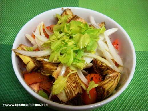 Ensalada de tomate, apio, alcachofas y cebolla