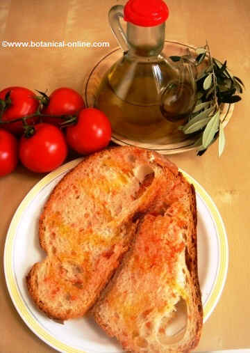 fotografía de receta de pan con tomate y aceite de oliva