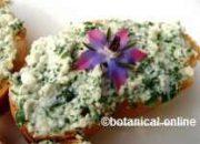 receta queso finas hierbas