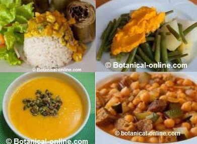 curcuma recetas