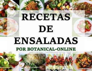 ensaladas botanical