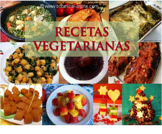 Cocina vegetariana for Blogs cocina vegetariana