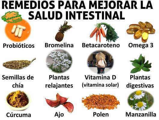 remedios, suplementos y plantas para mejorar enfermedades intestinales o del intestino