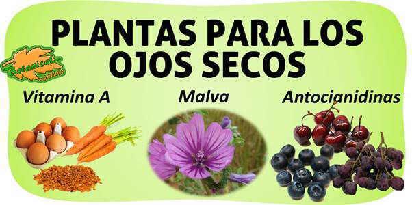 remedios naturales en el tratamiento de los ojos secos