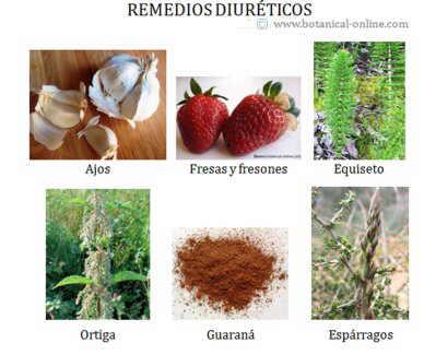 remedios diureticos