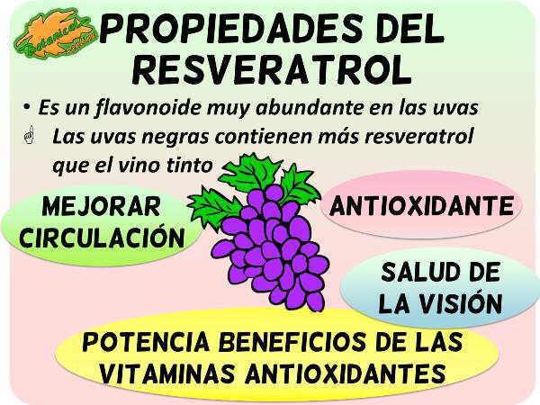 Resveratrol sirve para adelgazar