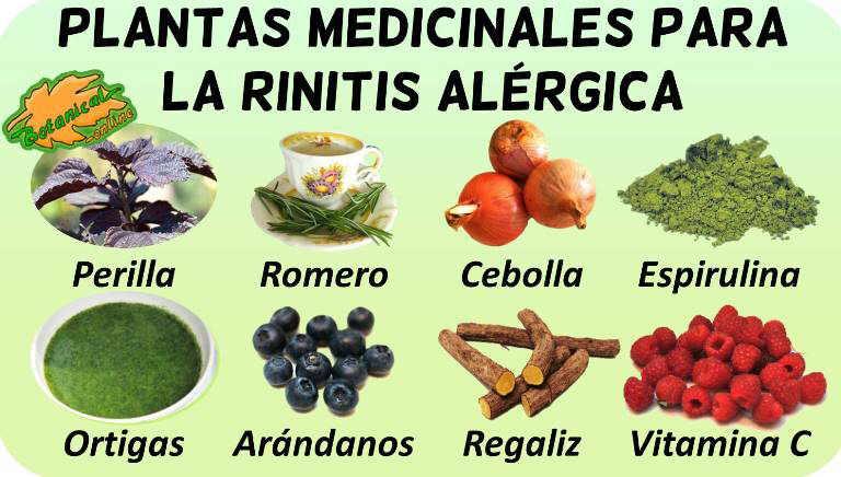 rinitis alergica fiebre del heno tratamiento natural