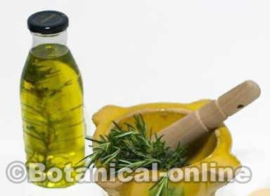maceraciones plantas aceite de romero hierbas aromáticas