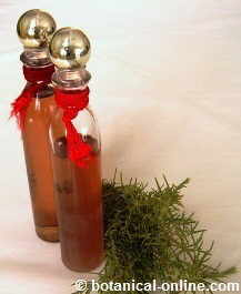rosemary water for skin