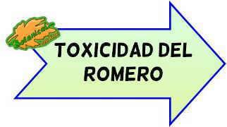 toxicidad del romero