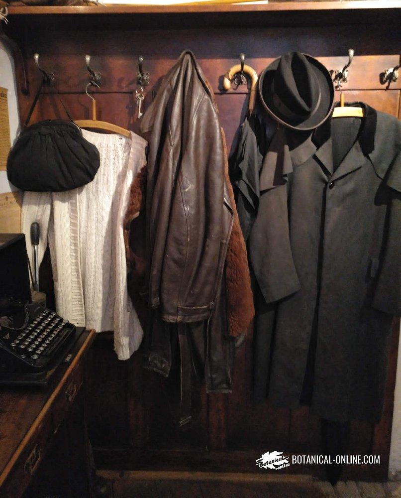 ropa en un armario polillas