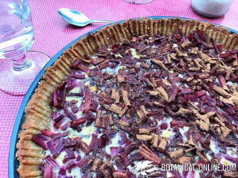 ruibarbo pastel receta como cocinar