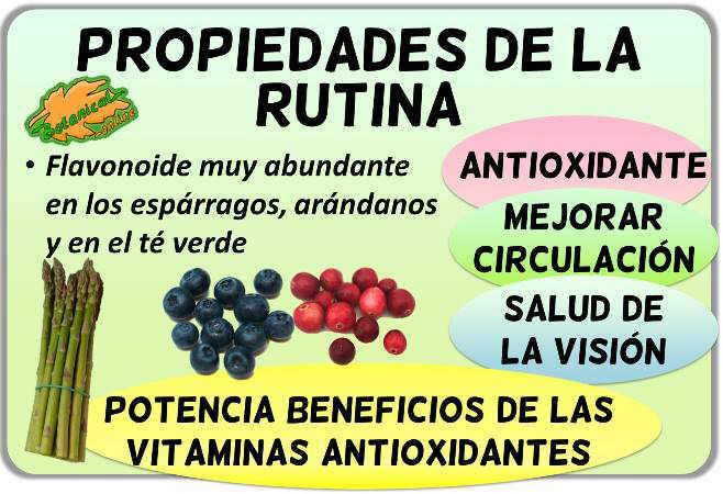 propiedades de la rutina flavonoide