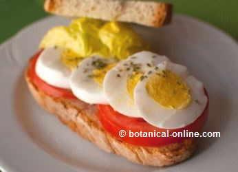 sandwich con huevo duro