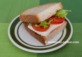 sandwich de queso vegetariano