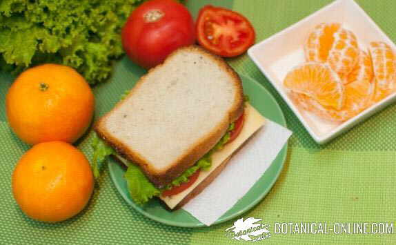 sandwich queso con fruta