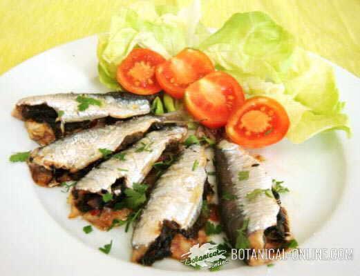 sardinas pescado azul
