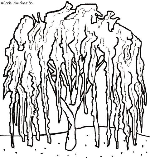 Imagenes De Arbustos Para Colorear