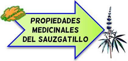 sauzgatillo propiedades medicinales