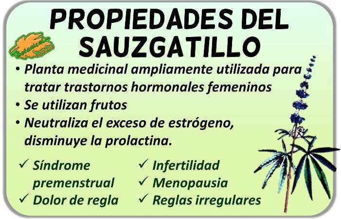 Propiedades medicinales del sauzgatillo, vitex agnus castus