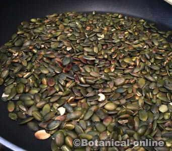 tostar semillas de calabaza o zapallo