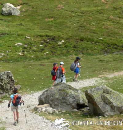 Ejercicio físico por la montaña, hombre andando con paisaje