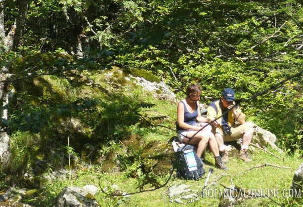 picnic senderismo