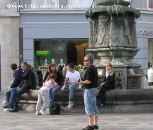 sentados en la fuente