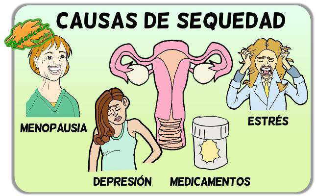 causas sequedad vaginal