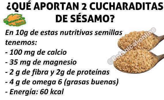 composicion sesamo calcio magnesio fibra proteinas omega