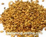 Semillas de sésamo contienen mucho inositol