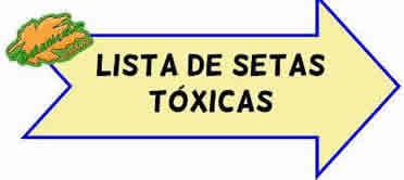 lista de setas toxicas