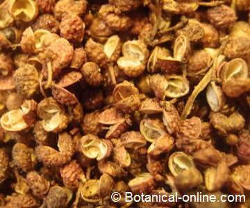 pimienta de Sichuán