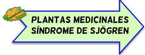 plantas medicinales sindrome sjogren