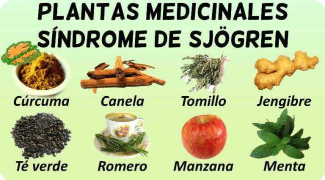 tratamiento natural y remedios caseros con plantas medicinales sindrome sjogren
