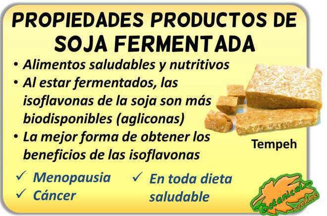 Propiedades medicinales de la soja fermentada por sus isoflavonas como el tempeh miso