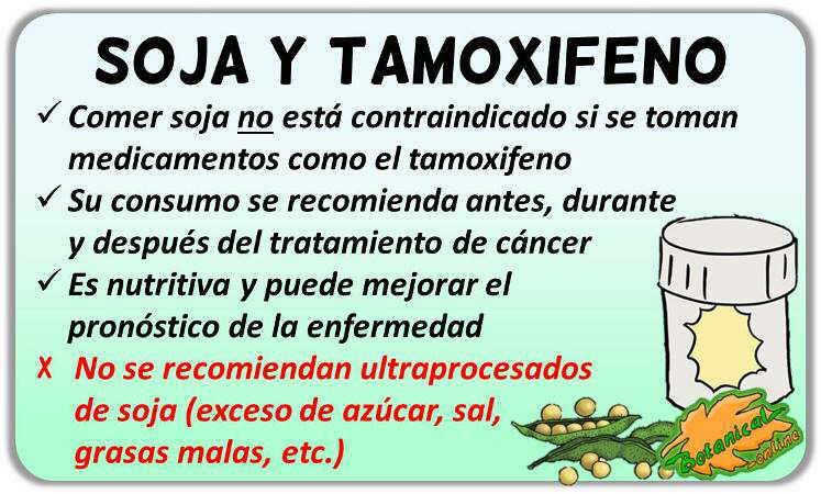 contraindicaciones peligros soja medicamentos cancer mama tamoxifeno