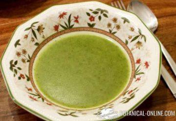 sopa de ortigas