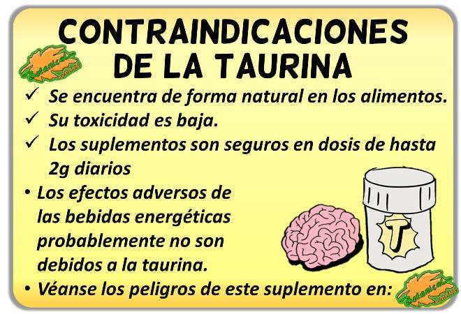 contraindicaciones y efectos adversos de la taurina