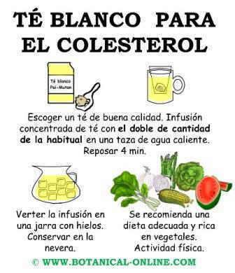Té blanco para el colesterol