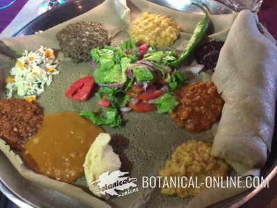 injeera de teff, plato tipico etiope