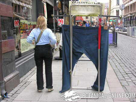 The biggest jeans in the world