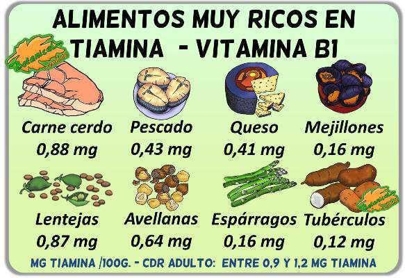 dieta alimentos ricos en tiamina vitamina b 1