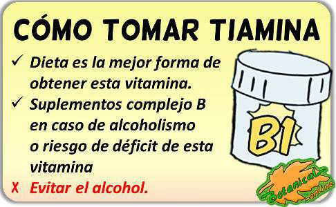 tiamina vitamina B como tomar suplementos