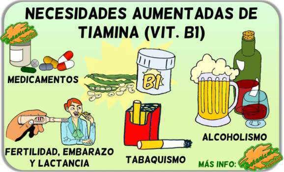necesidades aumentadas de tiamina vitamina b1 cdr