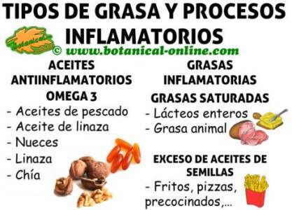 tipos de grasas omega 3, omega 6, saturadas y procesos de inflamación