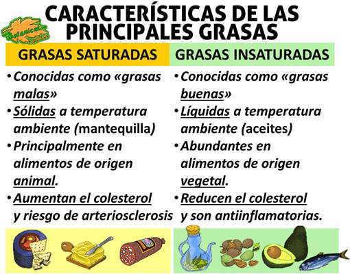 Caracteristicas principales de los diferentes tipos de grasas saturadas insaturadas y propiedades