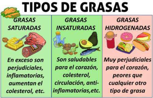 tipos de grasas saturada insaturada hidrogenada omega