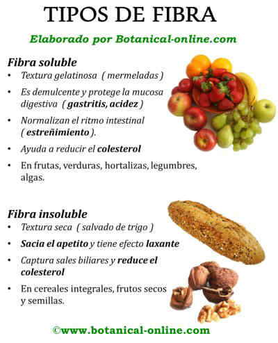 Tipos de fibra y beneficios, fibra soluble e insoluble
