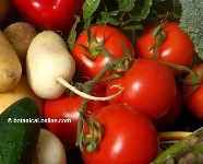 Properties of tomatoes